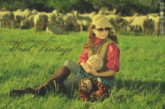 Quilt escocesa, ovillo de lana y ovejas con buena lana  de fondo ..